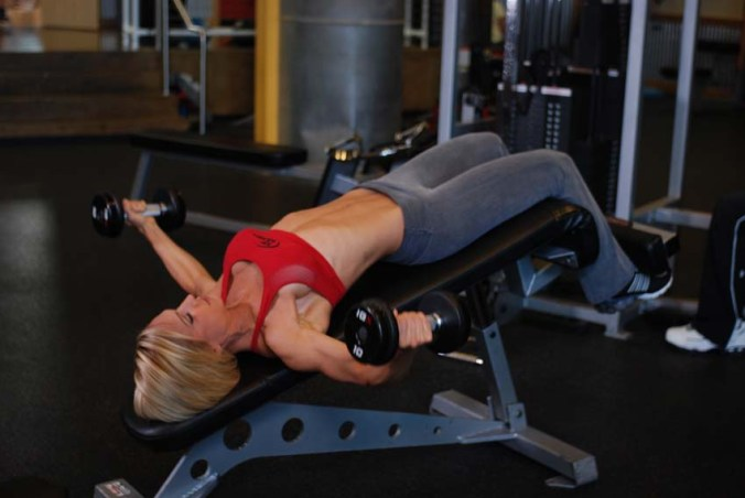 Decline Bench Flys Dumbbells