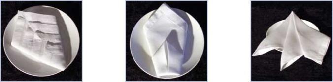 napkin-folding-guide